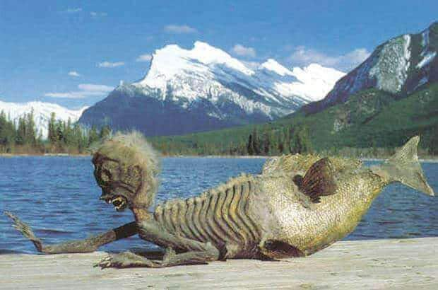 Banff Merman which is half monkey and half fish posed on his stomach with his head in the air in front of the Rocky Mountains in Banff.