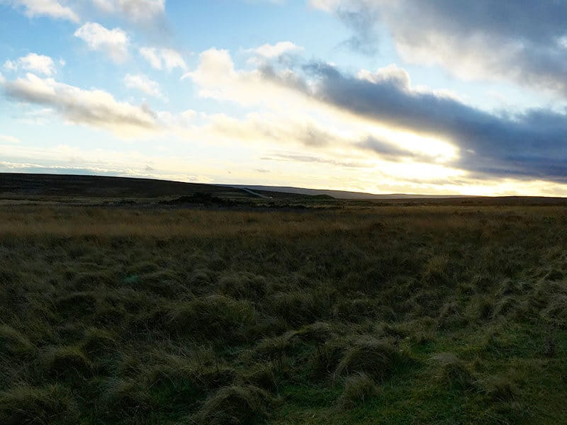 North York Moors during the dust with green, brown and yellow coloured grass