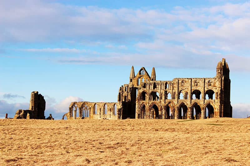 Ruins of Whitby Abbey sitting in an Autumn field of dead grass with a blue sky behind