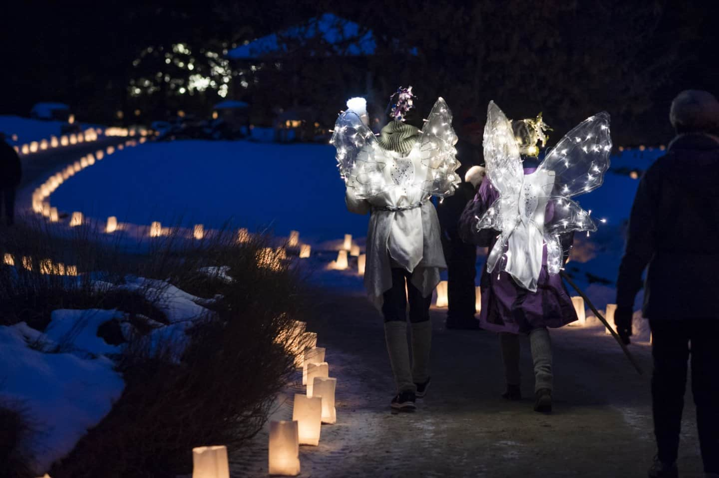 Luminaria Edmonton Path with two Light Angels