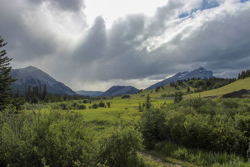 Green, tree lined land with a stunning mountain landscape in Crowsnest Pass Alberta