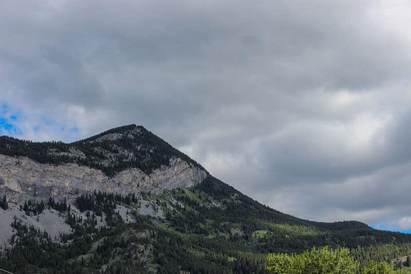 A tree lined mountain in Crowsnest Pass