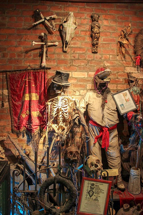 Voodoo Museum in New Orleans - skulls, voodoo dolls, alligator head on the wall.