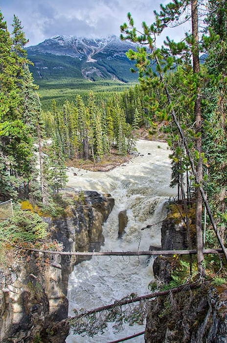 Athabasca Falls in Jasper National Park.  A huge natural waterfall in the middle of a forest in the mountains.