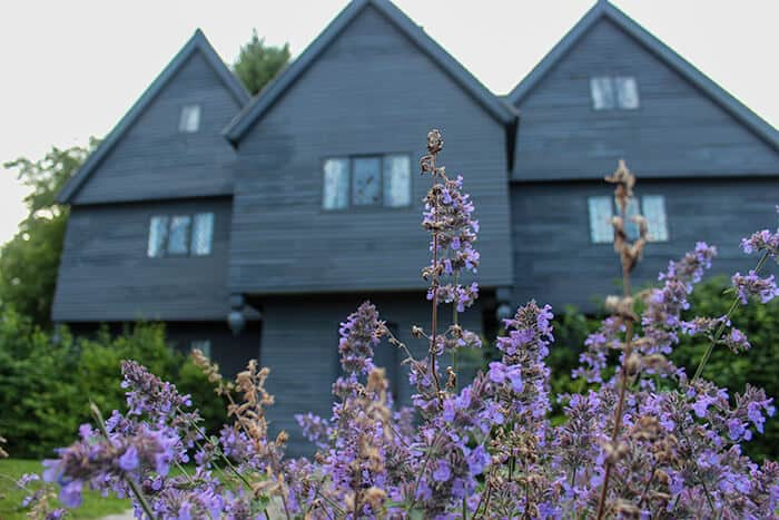 The front of The Witch House in Salem Massachusetts. Purple flowers are in focus at the front of the photo with the black exterior of the Witch House blurred in the background.