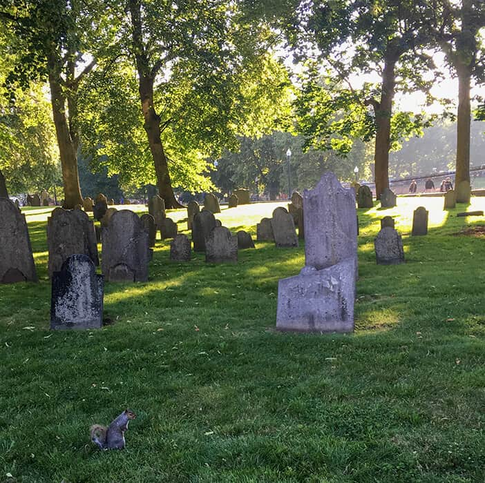 Old Central Burying Ground in Boston at dusk. Broken and old tombstones on a grassy hill with trees and the suns setting rays coming through hitting the back of the gravestones