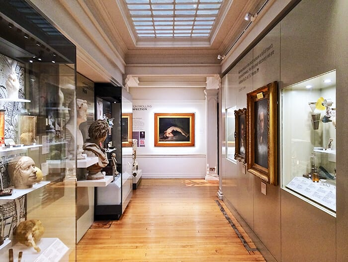 Inside of the History of Surgery Museum with wall displays and glass displays filled with medical history items