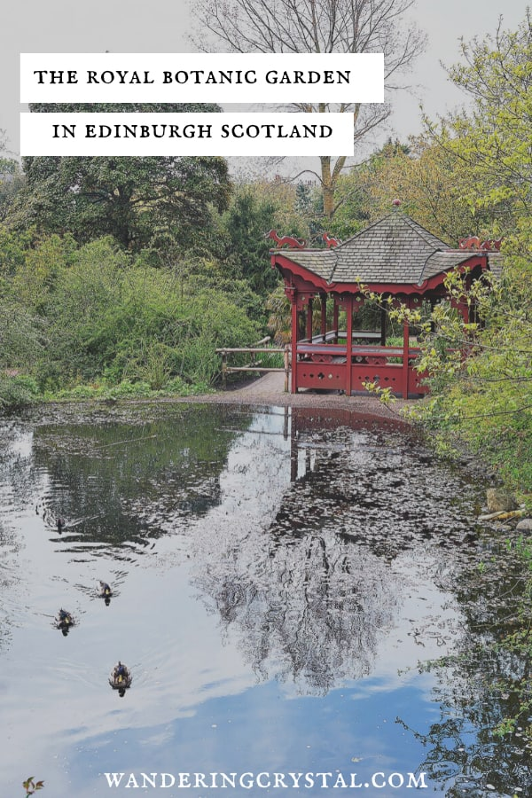 Visit the Royal Botanic Garden in Edinburgh Scotland, Things to do in Edinburgh, Things to do in Scotland #Edinburgh #Scotland #Thingstodo #BotanicGarden