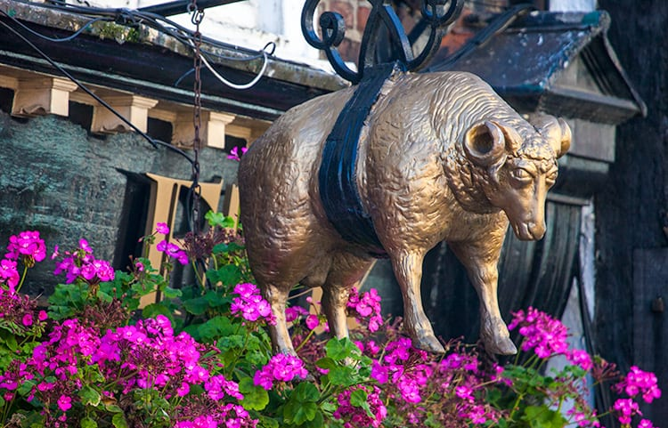 A golden sheep hanging on a sign in front of the Golden Fleece Inn. The Inn is one of the dark history sites and haunted places in York, England.