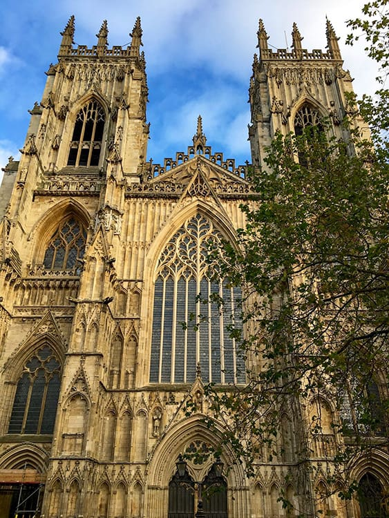 Gothic Cathedral York Minster with a tree on the right hand side.